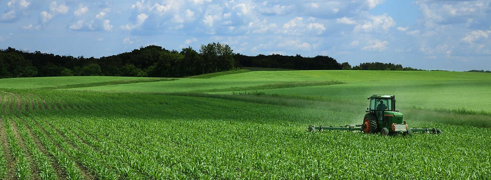 farm landscape.jpg