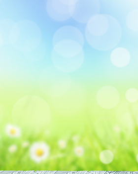 Spring Into Fitness - Website Background