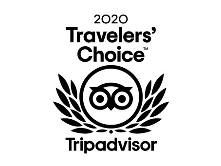 2020 Travelers Choice Award