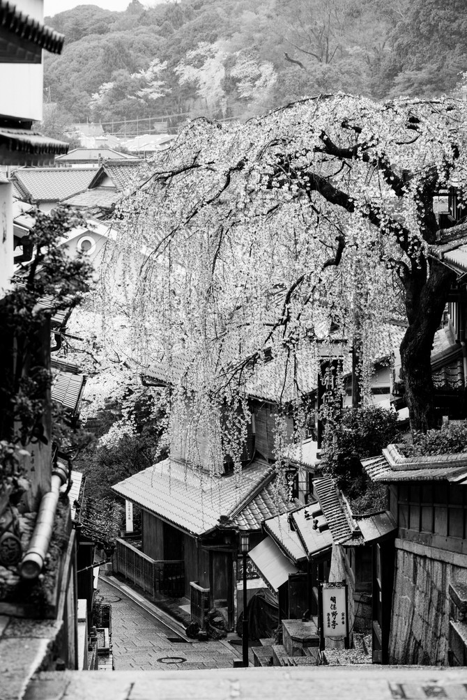 Kyoto in black & white