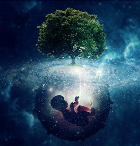baby tree of life.jpg