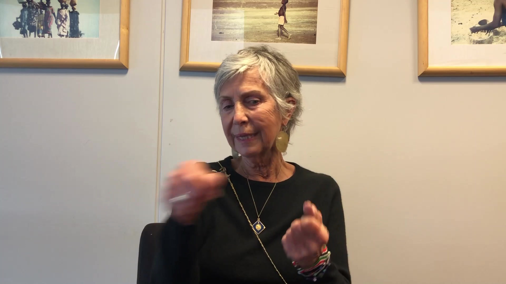 """March 2020 - Brenda Erickson, Rotary leader for the Project """"Souns"""" in South Africa, Puerto Rico and the US"""