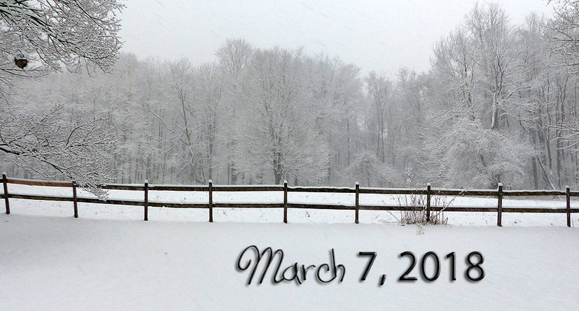 Snowing in March
