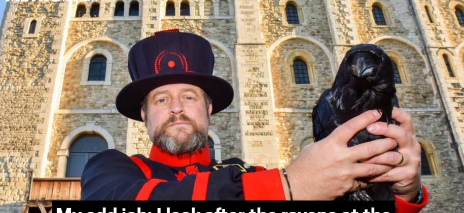My Odd Job, Ravenmaster