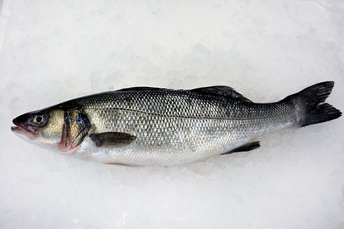 Branzino (Whole Fish - Approx. 2 lbs)
