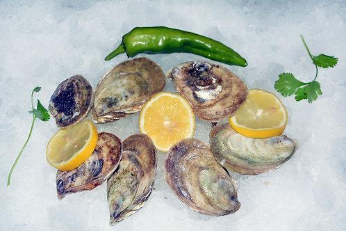 French Kiss Oysters (price per dozen)