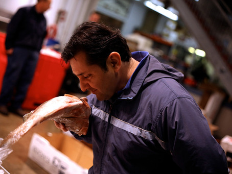At Home With New York's Top Fish Buyer
