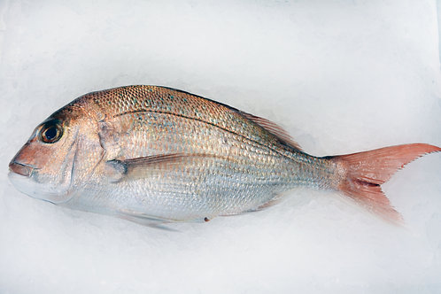 New Zealand Pink Snapper (Whole Fish - Approx. 2.5 lbs)