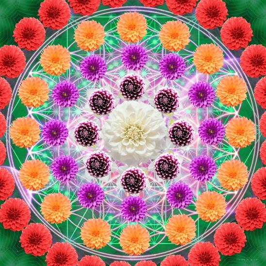 мандала цветы копия