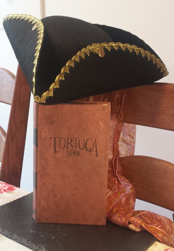Ready for something a little more piratey? Tortuga 1667.