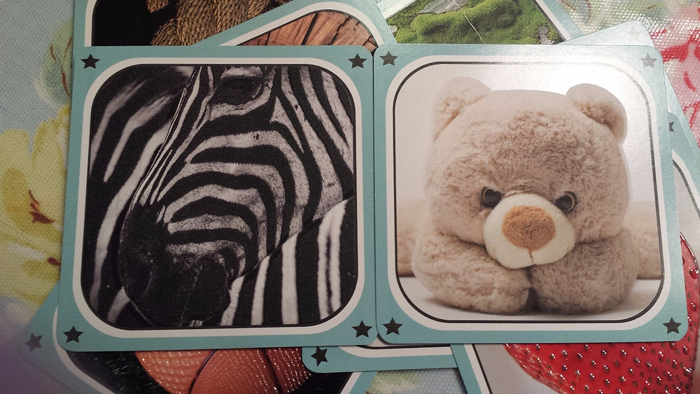 Clearly different. A Zebra and a Teddy Bear.