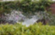 irrigation-2402568_960_720.jpg