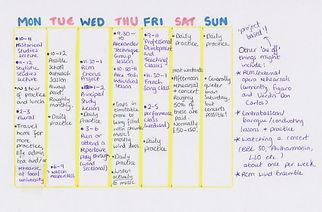 Amy timetable.jpg