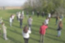 pulse pic 2.jpg