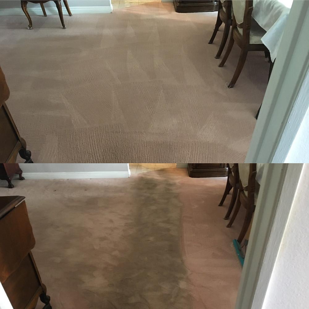 best carpet to prevent traffic wear