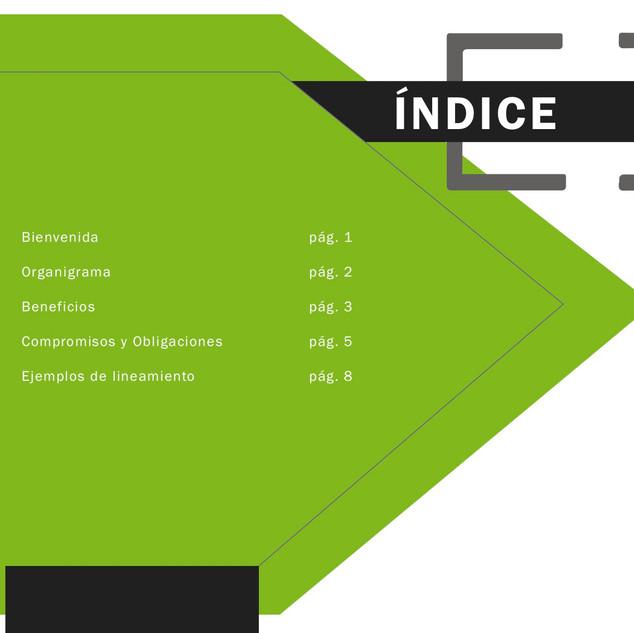 manual de induccion indice.jpg