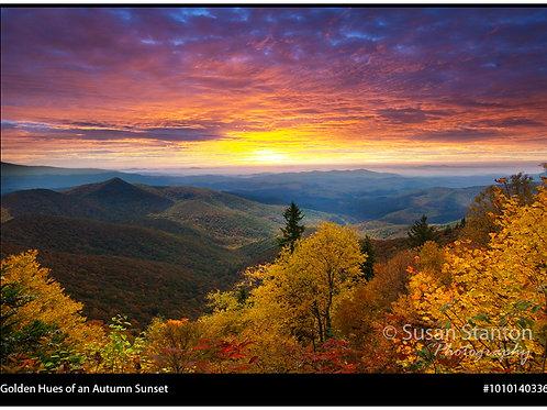 """""""Golden Hues of an Autumn Sunset"""""""