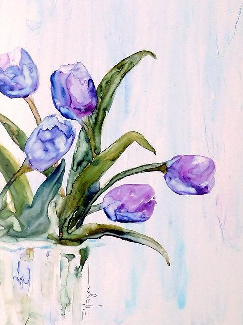 Tulips in Magenta