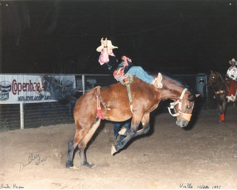 college rodeo.jpg