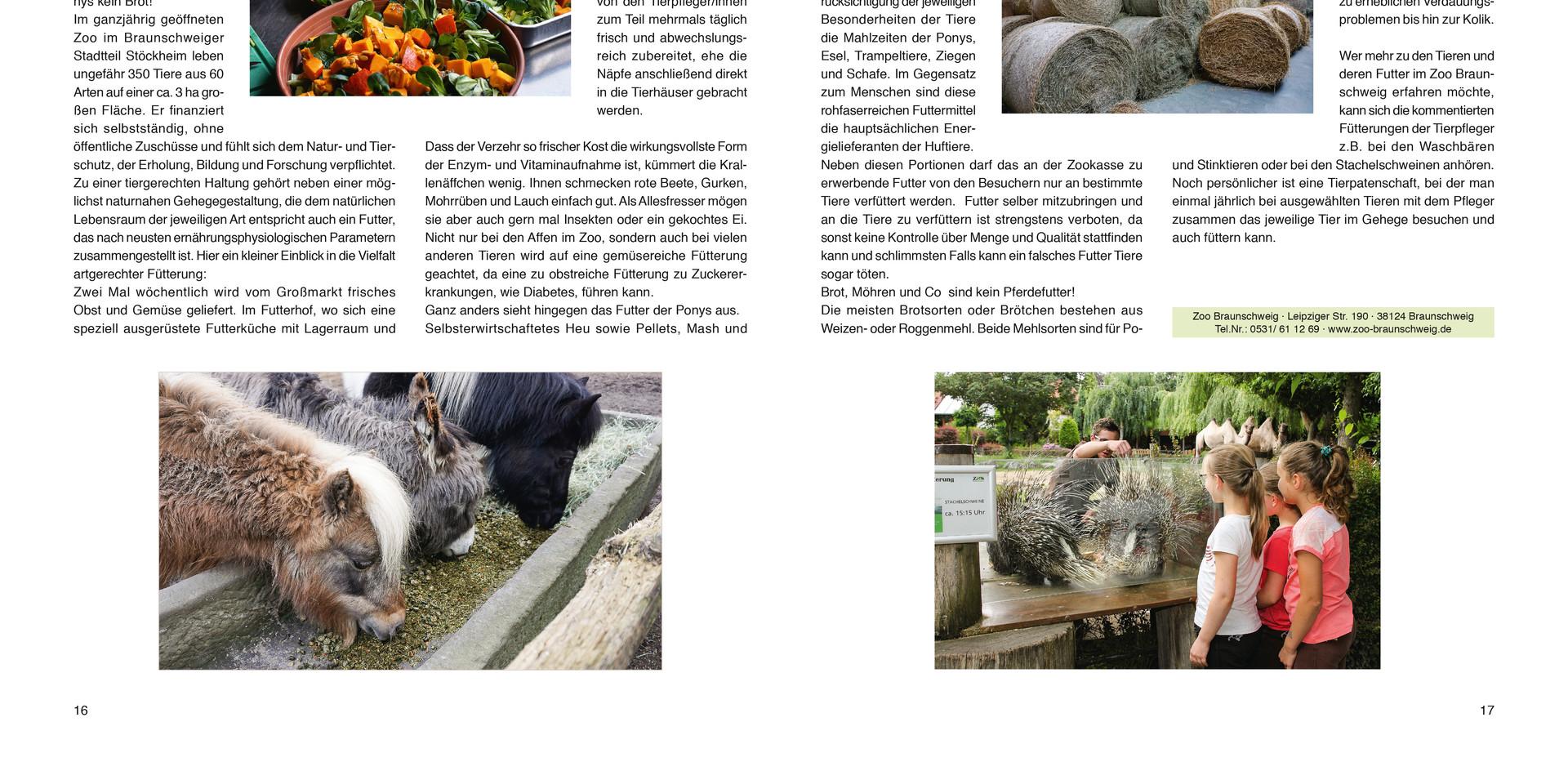Zzt 3_S.16-17.jpg