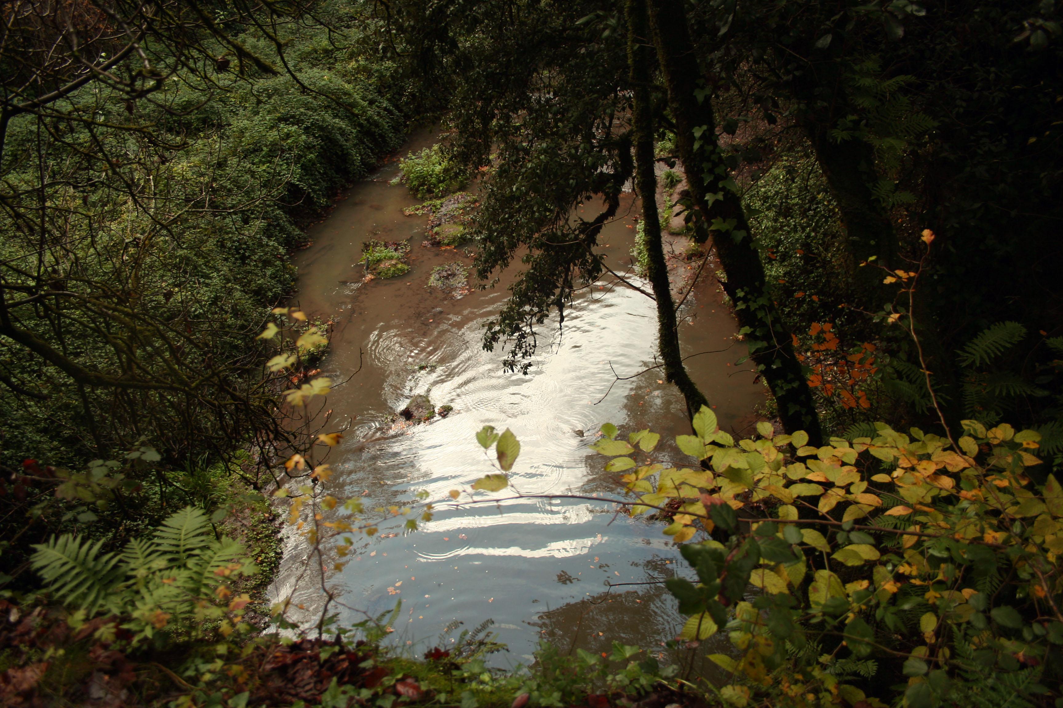 fiume cremera