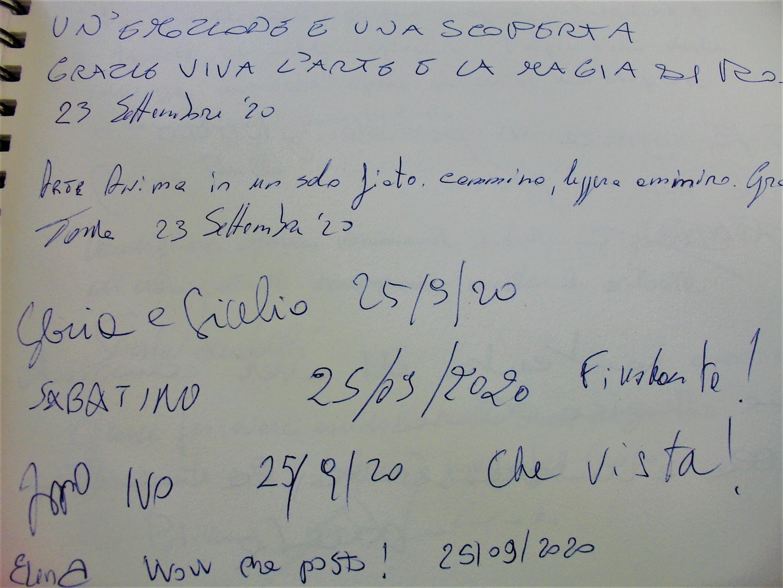 DSC09984 (2).JPG