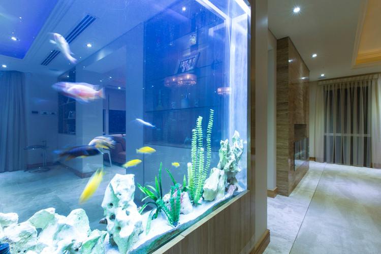 Dalkeith - Fish Tank