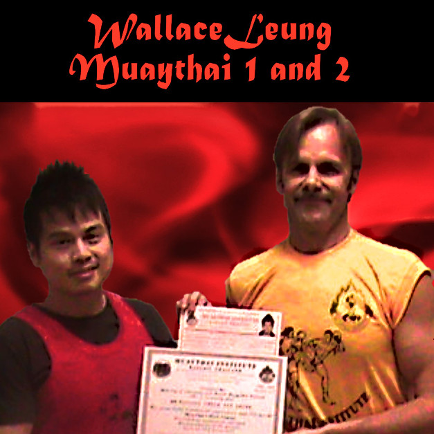 Wallace-Level1and2.jpg