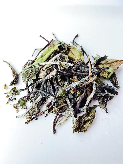 White Tea White Peony。白茶 白牡丹