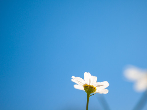 Mindfulness Exercise Series: Gratitude is the Right Attitude for Releasing Depression