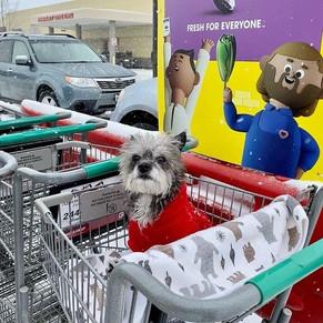 Shopping Gretchen