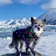 Gretchen in the Snow