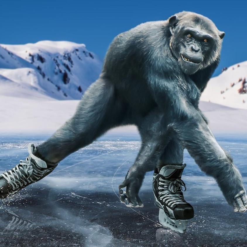 Tijd om je schaatsen aan te trekken!