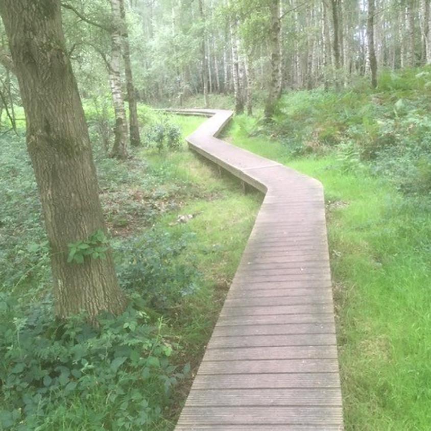 Geurige boswandeling met aansluitend bierplezier en een lekkere maaltijd - 15 KM
