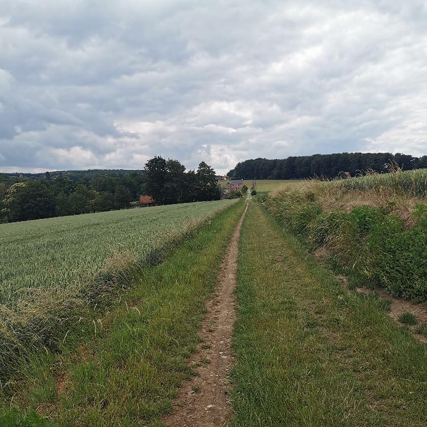 Wandelen in Maarkedal (Nukerke) - de Hugo Claus wandeling - 6km