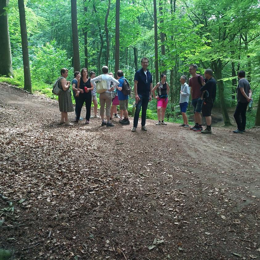 Fabelachtige wandeling met gids in het Kluisbos (5-6km)