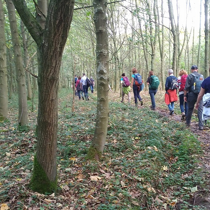 Stiltewandeling Everbeek beneden 13,5km