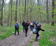 Wandeling in het Raspaillebos met vrijgezellen