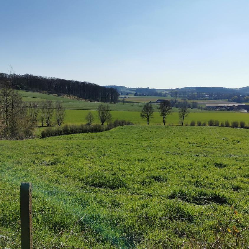 Fietsen in de Vlaamse Ardennen met gids, 23km