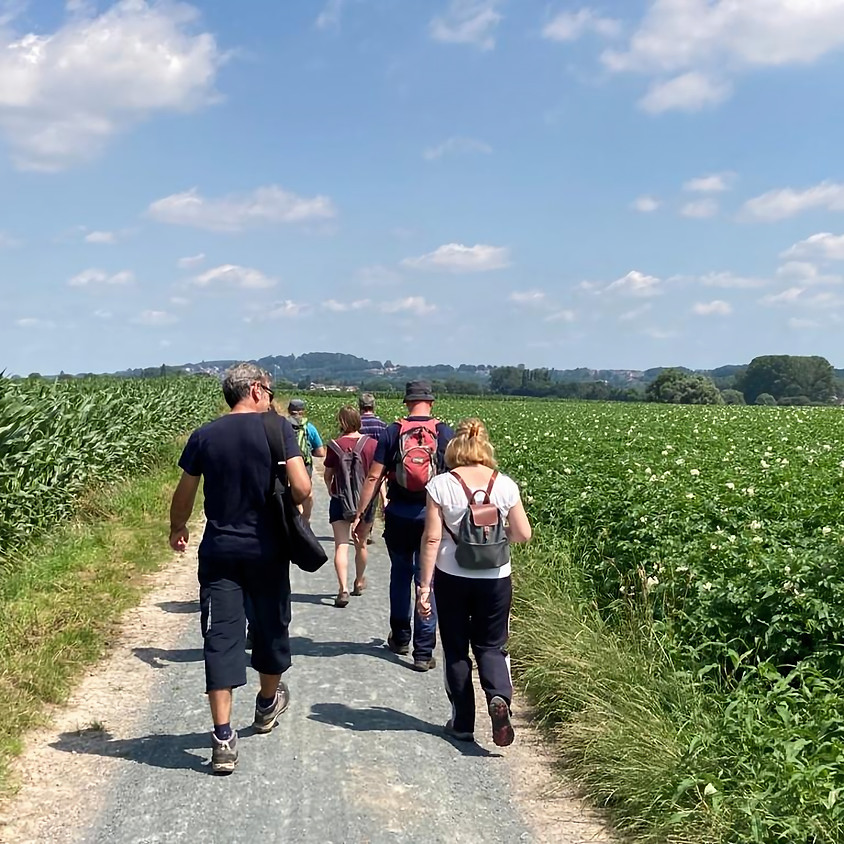 Tournee de Crème langs watermolens en dorre kouterlanden, 17km.