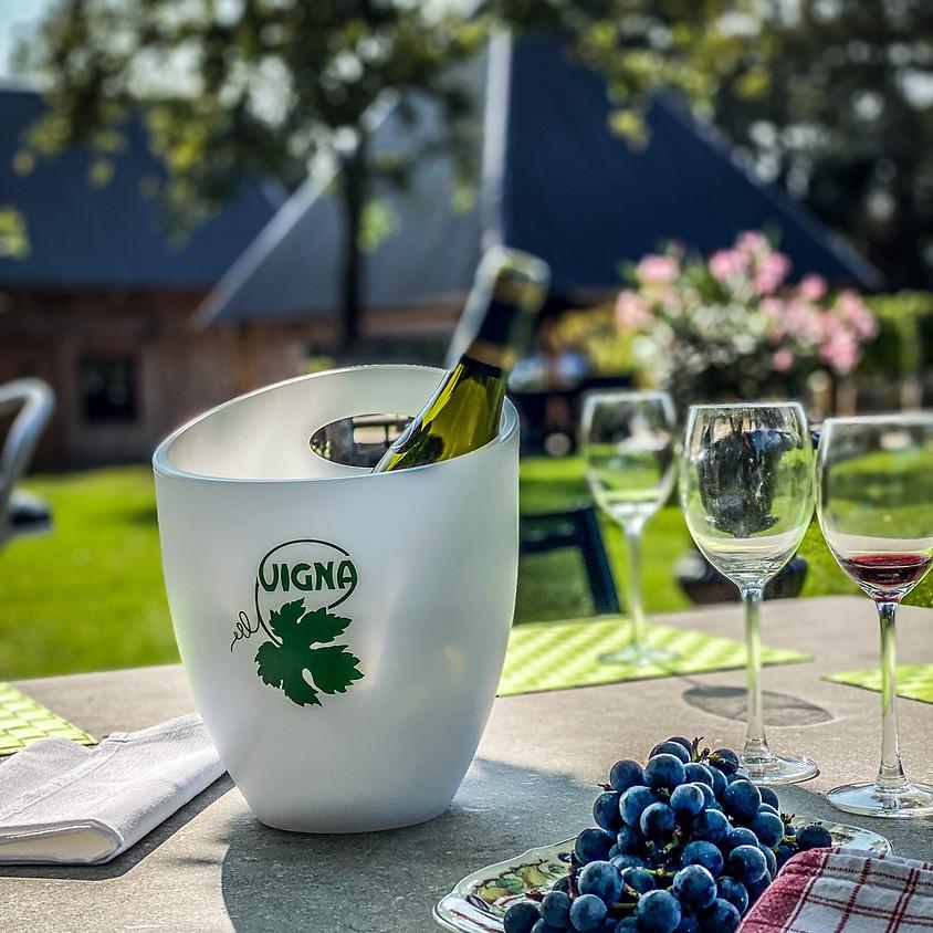 Wijndomein Vigna bezoeken en wijntjes degusteren met vrijgezellen. (Regio Antwerpen)