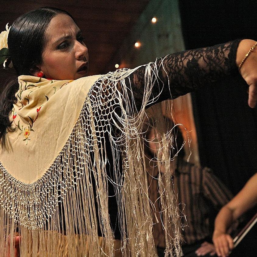 Olla Vogala: Flamenco optreden in Gent