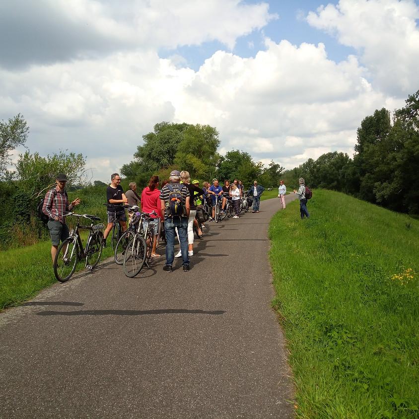 Fietsen in de noordertuin van Antwerpen, 45km, regio Brasschaat.