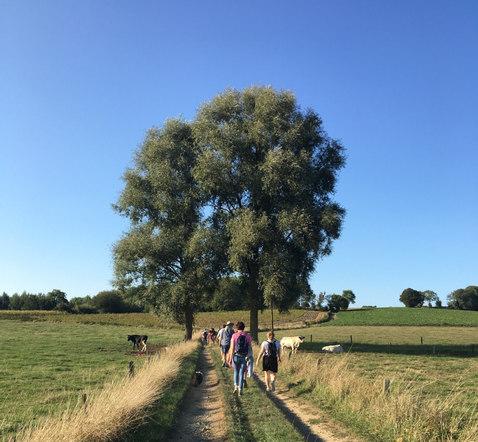 Wandelen over de taalgrens in de Vlaamse Ardennen - Ellezelles