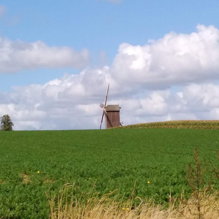 Wandelen met picknick in Vlaamse Ardennen (8km).