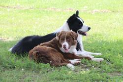 Kuiper and Ryker