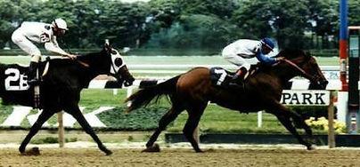 Beat the Gate Tony Winning At Belmont.jp