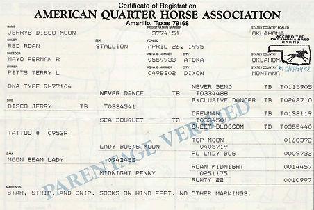 Jerrys Disco Moon 1995 Red Roan Stallion