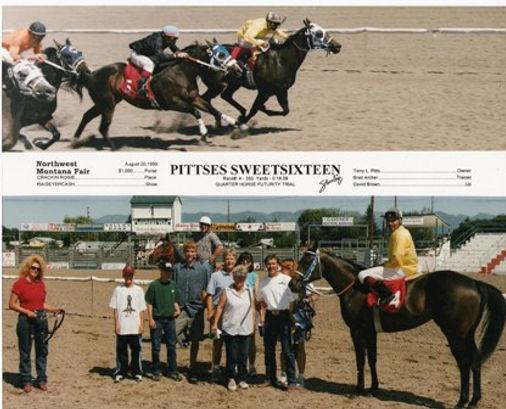 Pittses Sweetsixteen 1997 Br.M.win pictu