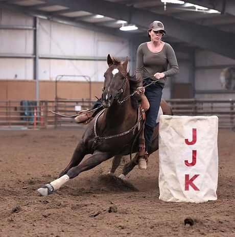 Johnny Zoom ridden by Sarah Ralls January 2021.jpg
